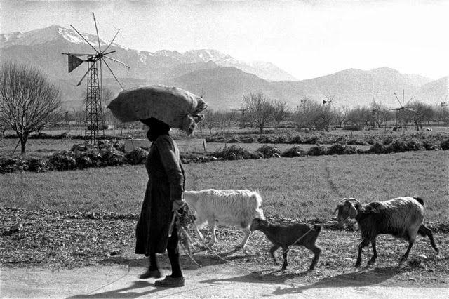 Κρήτη οροπέδιο Λασιθίου 1955. Ο Erich Lessing επισκέφτηκε τη Κρήτη το 1955 που φαίνεται να έχει συνέλθει από τη καταστροφή της Γερμανικής Κατοχής .Η φωτογράφιση είναι καθαρά ανθρωποκεντρικη και οι εικόνες δυνατές.
