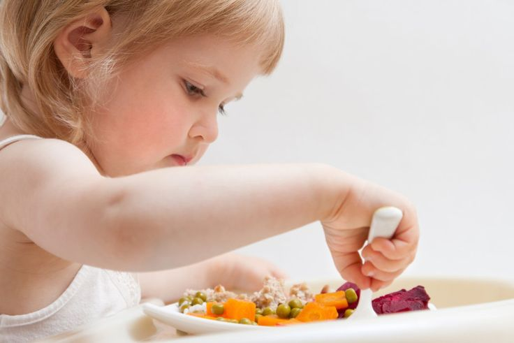 5 ricette per bambini da 3 a 5 anni #Cernia, #Involtini, #Ragù, #Ricette, #Vellutata http://mom.cudriec.com/?p=87