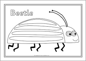 Mad About Minibeasts colouring sheets (SB9542