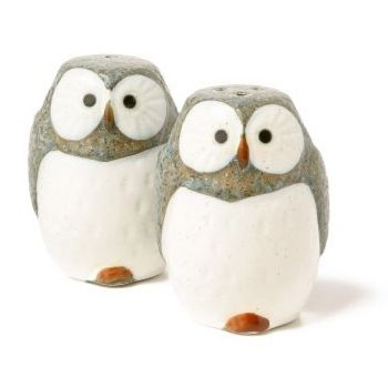 everyone should own owl salt and pepper shakers.
