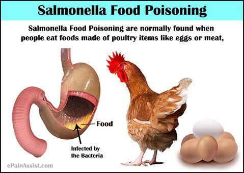 Salmonella Food Poisoning | Food poisoning symptoms ...