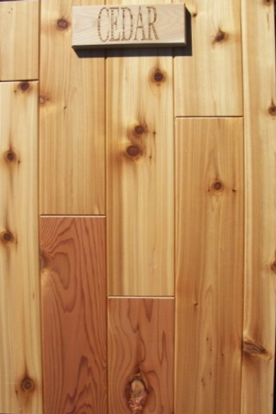 1000 Ideas About Cedar Tongue And Groove On Pinterest Tongue And Groove Shower Installation