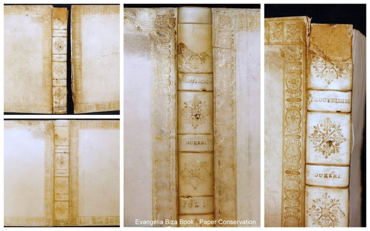 Conservation of Parchment Binding