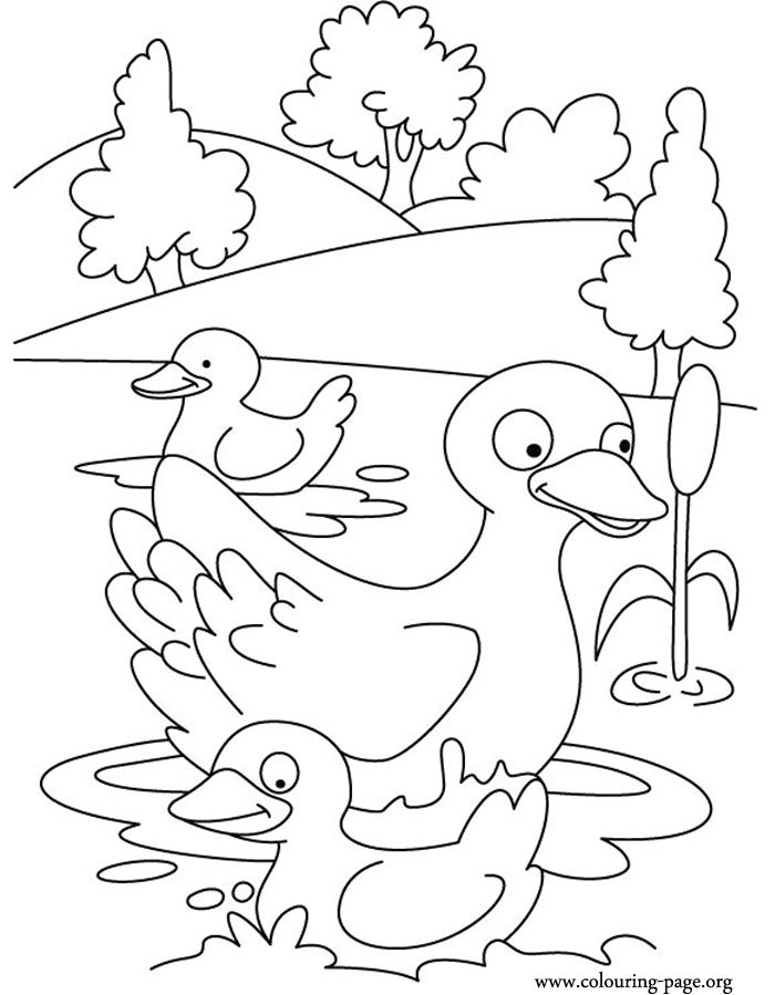 coloring pages swimming in a lake | 9 best Clothes Coloring Pages images on Pinterest ...