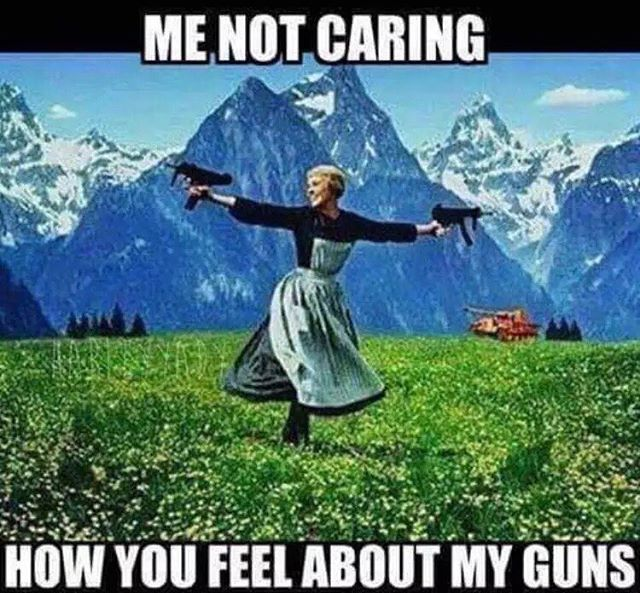 """Like"" if you love your guns and support the Second Amendment. #2Ndamendment…"