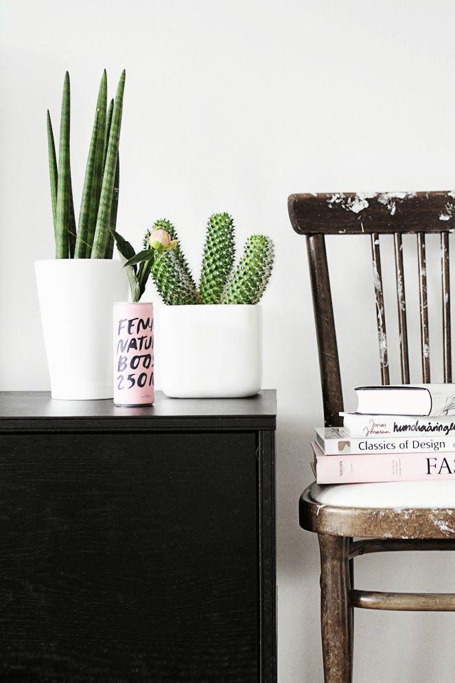cactus corner. #designeveryday