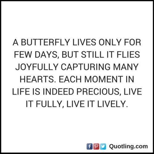 A butterfly lives only for few days, but still it flies joyfully - Life Quote