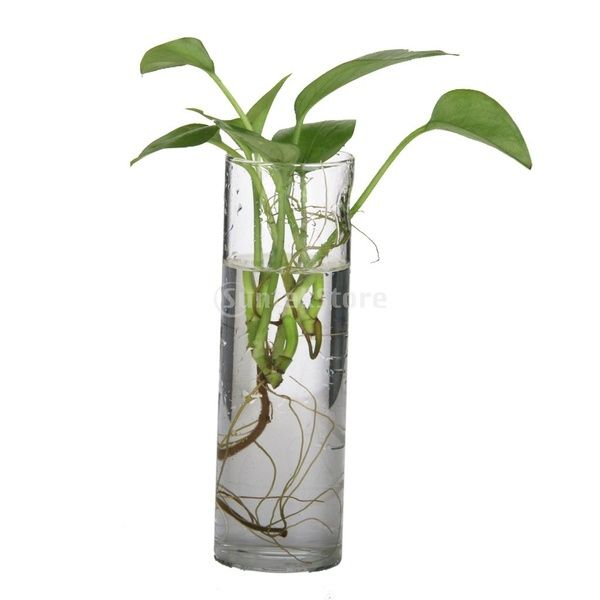 DIY Clear Glass /'Pot Belly/' Shape Vase.. Ready to Decorate,Paint,Use as Is,Bud Vase,Rooting Vase