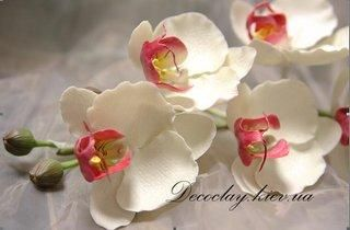 orchid tutorials :: pg. 3.  there's more than 1 way to make gumpaste flowers.  this site has pictorial tutes that illustrate the point.  it's a good reference site!  check page 4 to see what i mean.