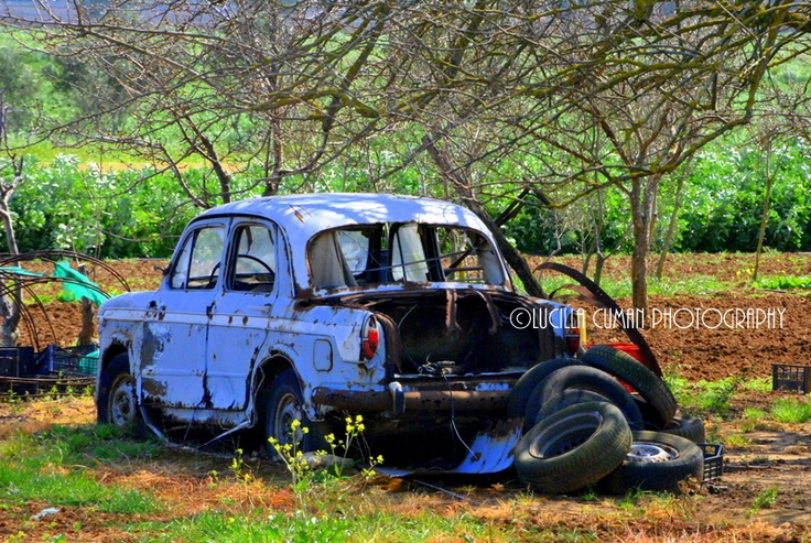 Old car...Nice!!