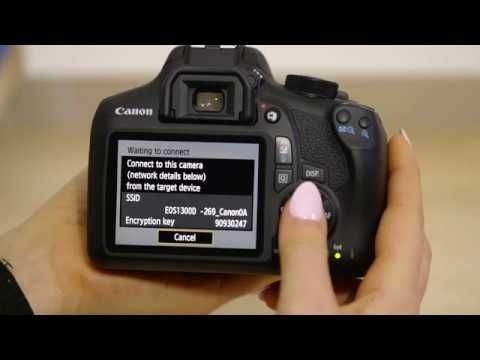 Action Best Budget Canon EOS 1300D Camera Review (Connect