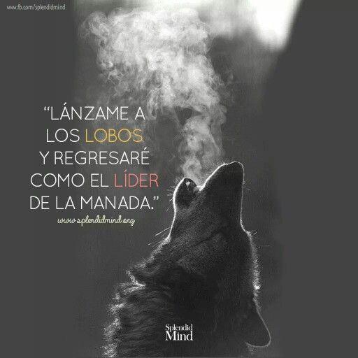 Lanzame a los lobos y regresaré como el líder de la manada #frases