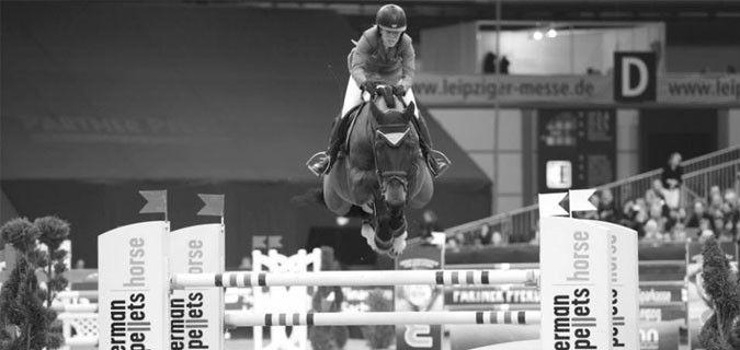 BELLA DONNA, la cavalla di Meredith Micheals Beerbaum, 2° nella ranking per i migliori cavalli tedeschi stilata dalla Federazione Equestre Tedesca, davanti a tanti cavalli più esperti di lei, che ha soltanto 9 anni (è nata il 12 giugno 2003, quindi ne ha agonisticamente 10 da poche settimane).