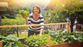 Übersäuerung: In 7 Schritten zum gesunden Säure-Basen-Haushalt