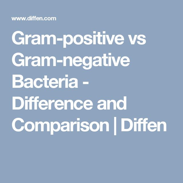 Gram-positive vs Gram-negative Bacteria - Difference and Comparison | Diffen