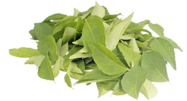 Hair fall control with curry leaves How to use curry leaves for hair growth recommendations
