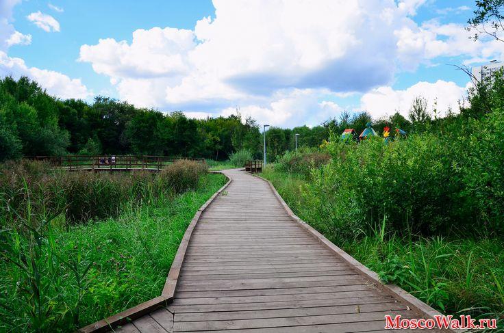 деревянные настилы в парках картинки - Поиск в Google
