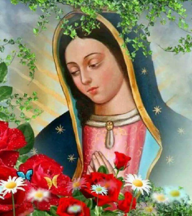 Oración A La Virgen De Guadalupe Para El Amor Y La Prosperidad Oracion A La Virgen Virgen De Guadalupe Oracion Virgen Guadalupe