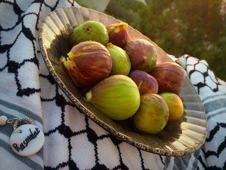 Hausmittel Gegen Obstfliegen hausmittel gegen obstfliegen das knnte sie auch honig gegen essig
