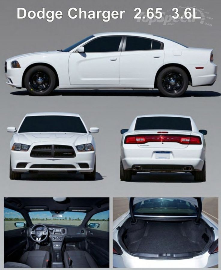 Chrysler Dealership Colorado Springs: 1000+ Ideas About 2015 Dodge Charger On Pinterest