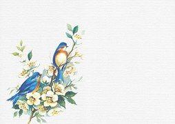 Ptaki, White, Tekstura, Zielony, Liście