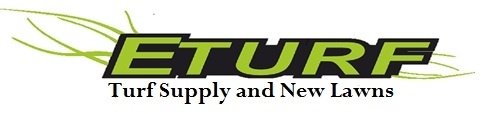 Nowadays, turfs are widely-used at homes and also in sports grounds to grow the screen rather than cultivating the grass plot from the scratch. When considering buying turfs, many people usually choose to go to turf suppliers who can offer them wide range of turfs to pick from including natural and synthetic. Eturf is a reputable Turf supplier of Sapphire soft leaf buffalo turf to Newcastle, Cessnock, Maitland and all areas ofvthe Hunter Valley. Call 49 300 100.