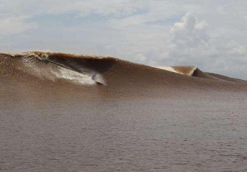 Gelombang Bono yang gahar! Sungai Kampar di Riau (Albert Saniko/detikTravel)
