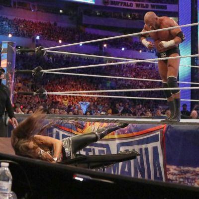 Seth Rollins vs. Triple H - Non-Sanctioned Match WrestleMania 33: April 2nd 2017