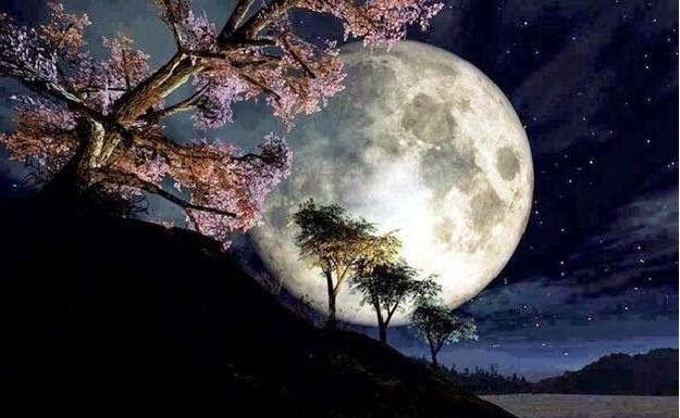 Horóscopo lunes 03/11... Planificando una semana de Luna Llena...