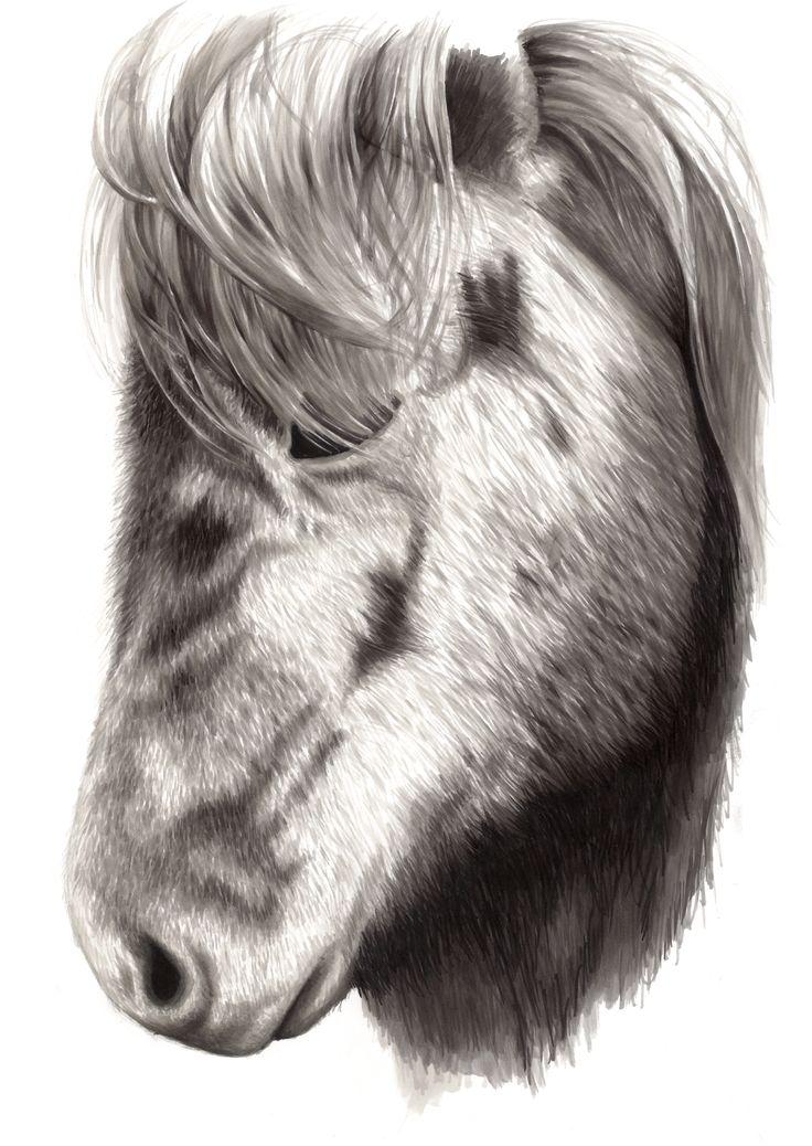 Grey Horse, by Mia Olofsson.