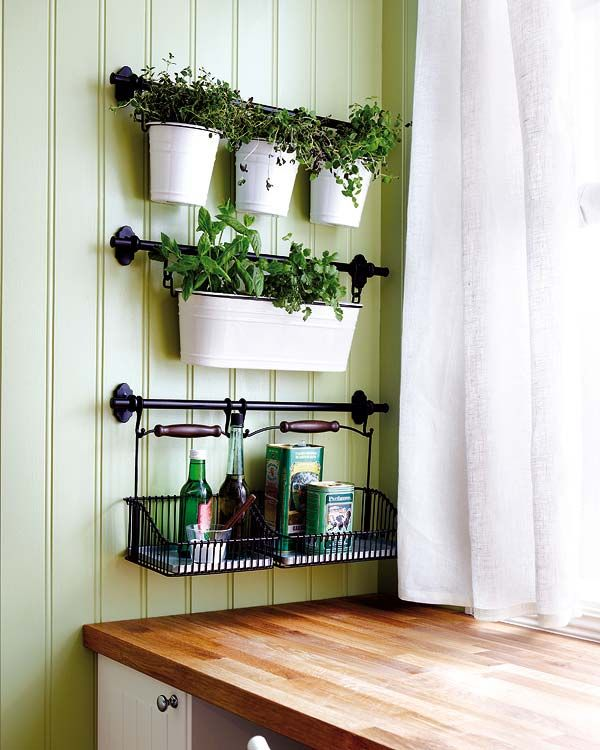 Kitchen herbs and storage...sunshine from the window without using counter space