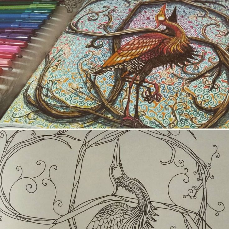 Colouring Coloring Books Ark Vintage Pages