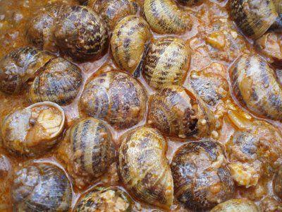 Esta es la Receta de Castroconfidencial  para los caracoles de San Andrés:     Ingredientes : 1 kg de caracoles de tierra 1 cebolla ...