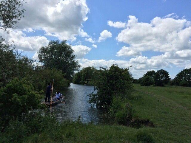 Meeta :: Cambridge