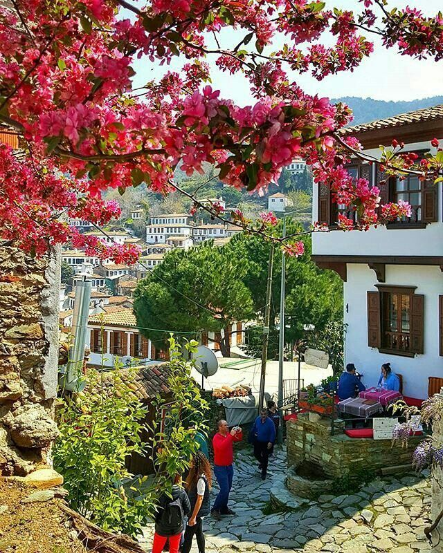 By @fatmaeyes Şirince Village, İzmir Tag your photos @cities.of.turkey + #citiesofturkey for a chance to be featured . #citiesofturkey #türkei #tурция #turquie #turchia #turquía # #travel #travelling #trip #instatraveling #turkey #vsco #vscocam #instago #igersturkey #vscoturkey #igers #instagood #follow #photooftheday #şirince #village #şirinceköyü #izmir