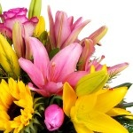 RAMOS DE FLORES ROSAS Y AMARILLAS - Tipos de Flores | Flores a Domicilio