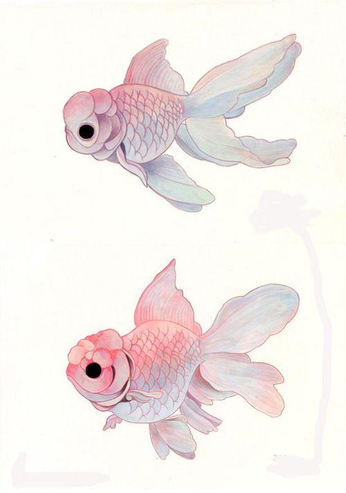 Fish                                                                                                                                                      Más