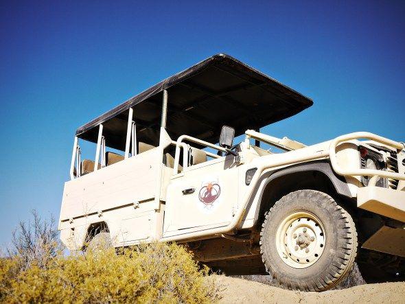 Inverdoorn safari vehicle