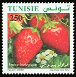 Subject  Organic Farming In Tunisia : The Strawberry  Number  1911  Size  36x36 mm  Issue Date  12/05/2012  Number issued  500 000  Serie  Ordinary  Printing process  offset  Value  250 millimes  Drawing  Hela Ben Cheikh
