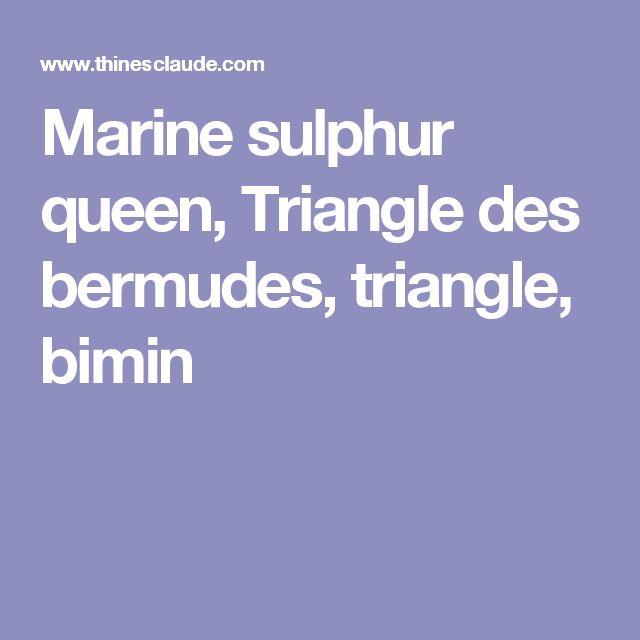 Marine sulphur queen, Triangle des bermudes, triangle, bimin