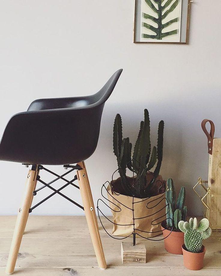 •Kids chair• deze te gekke stoeltjes staan ook bij loods 5 en soon online! We hebben ze in diverse kleuren zwart , wit , rood , groen , geel en blauw . Vanaf €45,95-49,95. Wil je alvast een pre-order plaatsen dan kan dat via bluftinterieur@gmail.com #dutch #label #bluftinterieur #design #interior #interieur #interiordesign #bluft #monstera #plants #leaves #bananaleaf #monsteraleaf @bluft.interieur