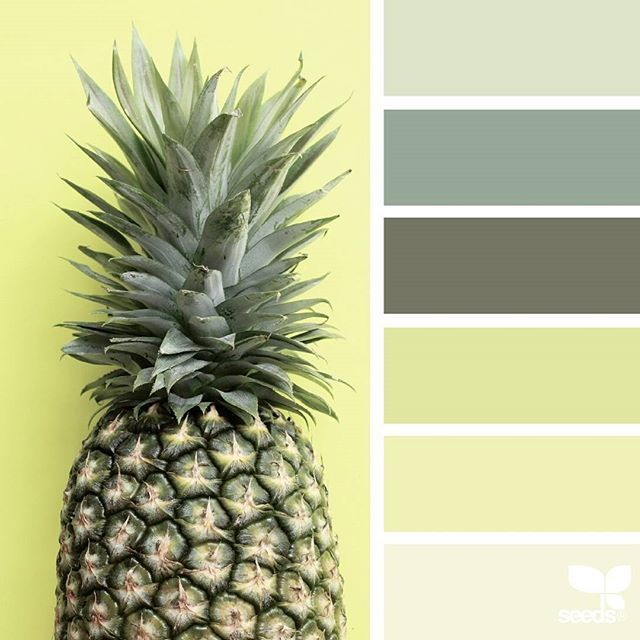 today's inspiration image for { pineapple palette } is by @thebungalow22 ... thank you, Steph, for another incredible #SeedsColor image share!