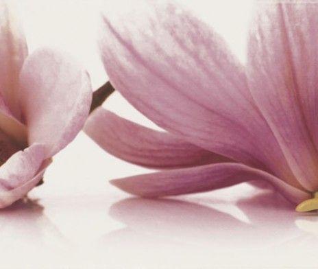 Faianta-Decor-Abrila-inserto-Flower-A