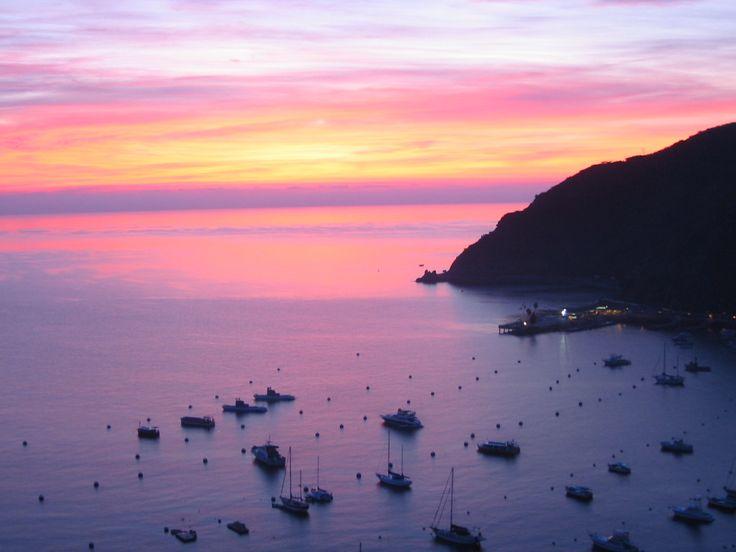 Catalina Island Tourism: 79 Things to Do in Catalina Island, CA | TripAdvisor