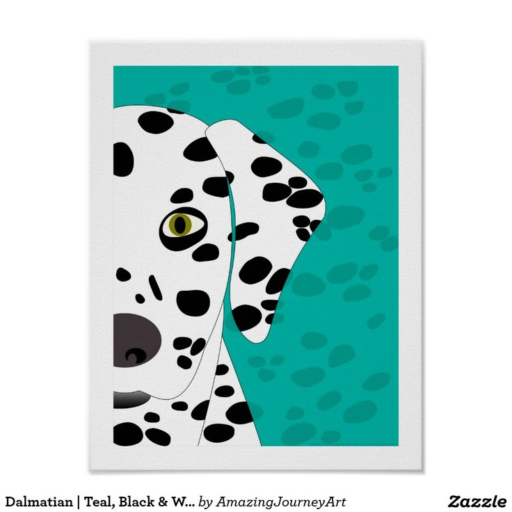 Dalmatian   Teal, Black & White Abstract Dog