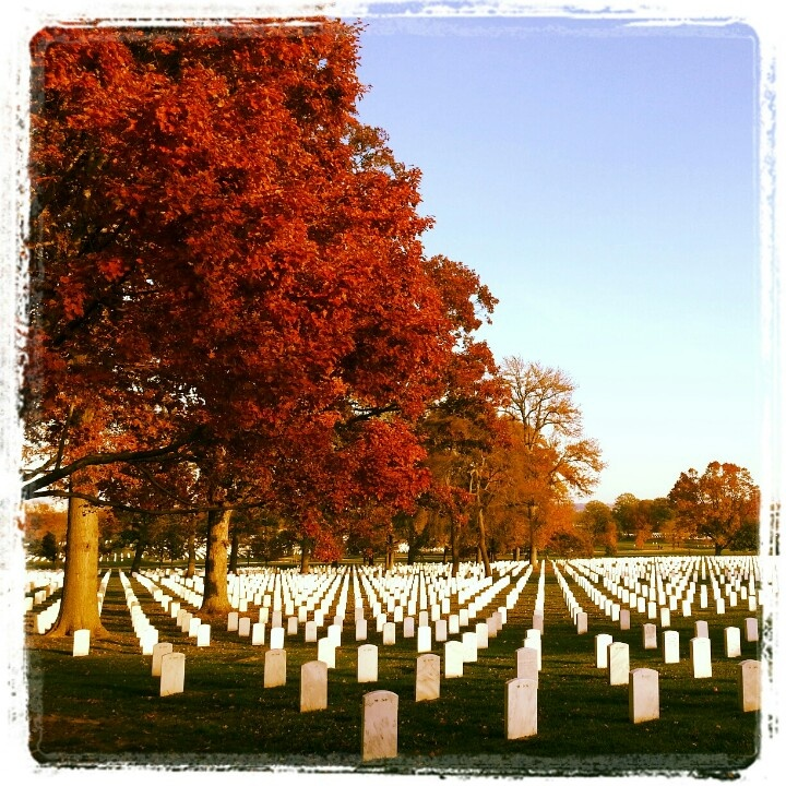 Arlington cemetary    Thank you Uncle Bill for giving your very young life for our country and our freedom.