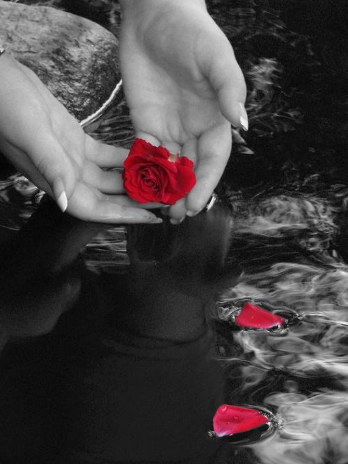 Hint of color... | Colour Me - Just a Touch | Pinterest