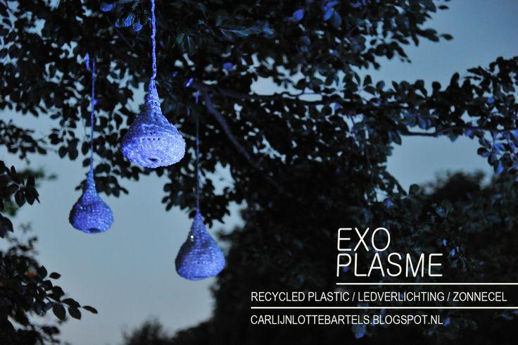 Carlijn Lotte Bartels: Exoplasme