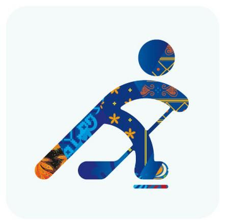 Ice Hockey - Sochi Winter Olympics 2014 Pictogram
