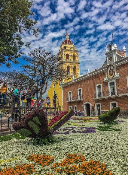 Disfruta estas vacaciones en #Atlixco #Puebla, #Mexico Pueblo Mágico y conoce el tapete monumental de flores... Maravillas de México! Tour By Mexico - Google+